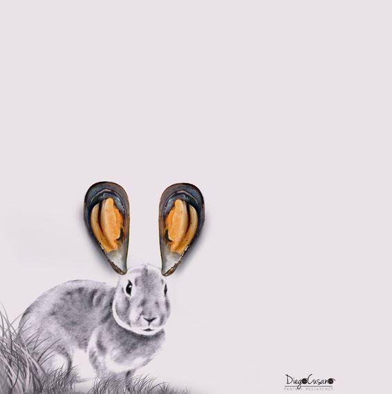 2016-08-16-1471369444-8635886-rabbitsea2016.jpg