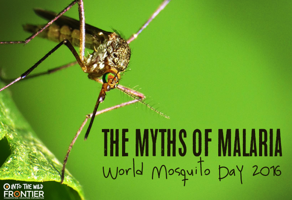 2016-08-22-1471863792-5614060-mosquitoday.png
