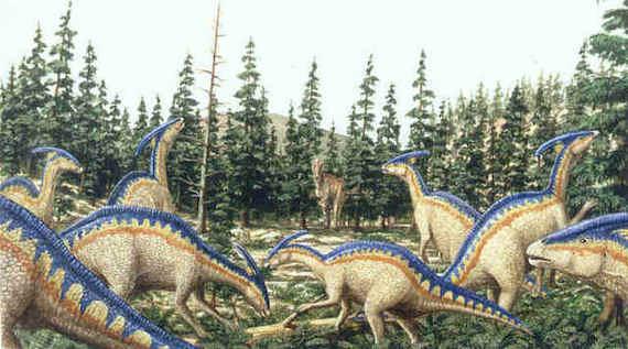 2016-08-29-1472489278-4688960-parasaurolophus35bis.jpg