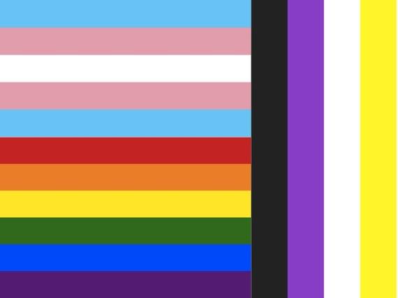 2016-09-01-1472749240-4788879-TransLGBTGNCflag.jpg
