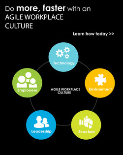 Enable an Agile Workplace Culture