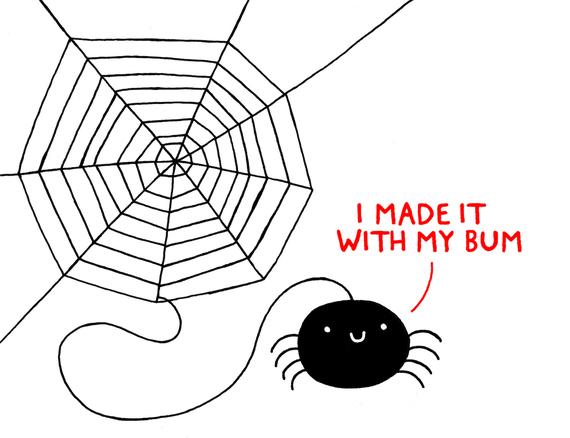 2016-09-29-1475146227-9422317-spiderBUM_hi.jpg