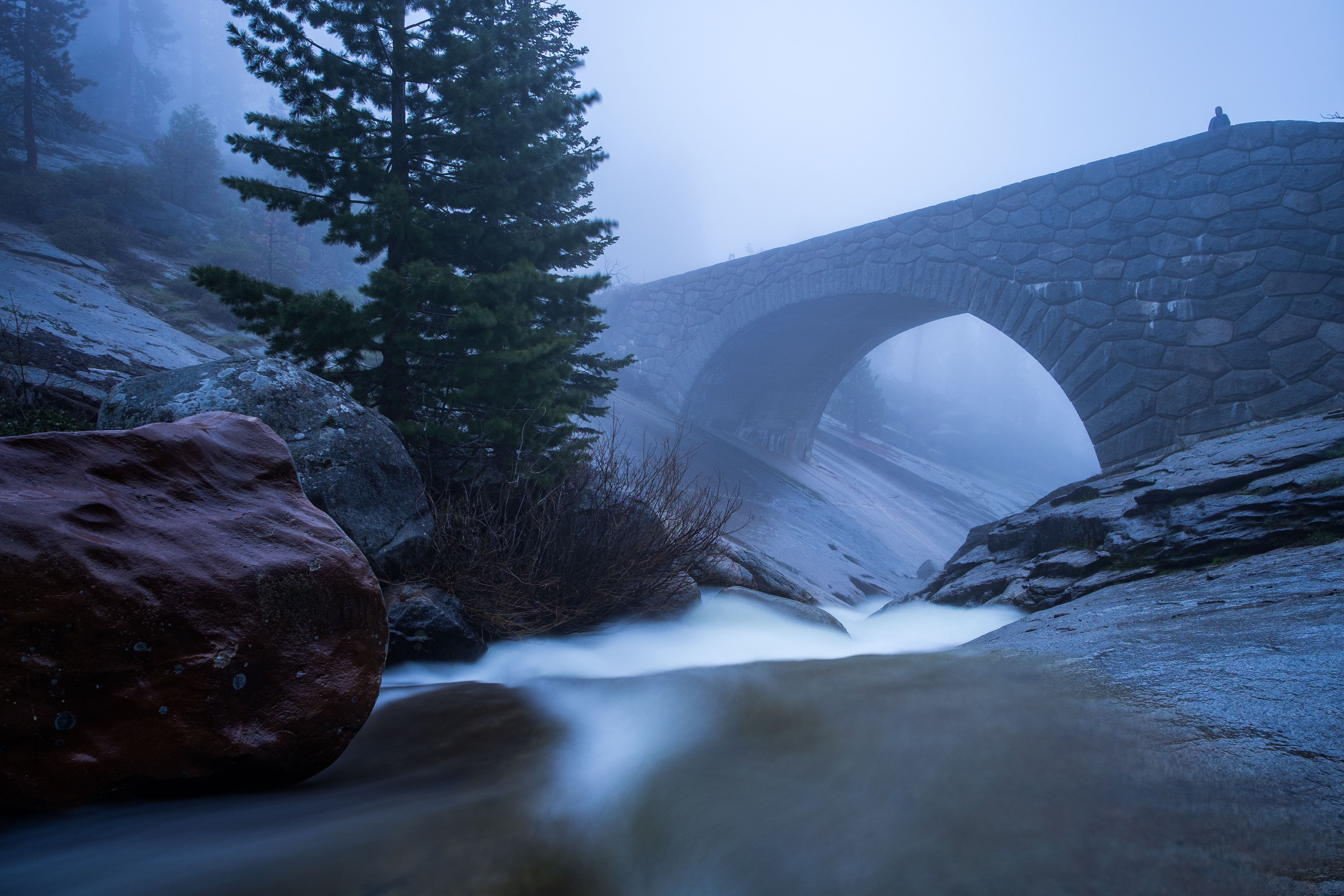 Must See Stops in Sequoia and Kings Canyon National Parks