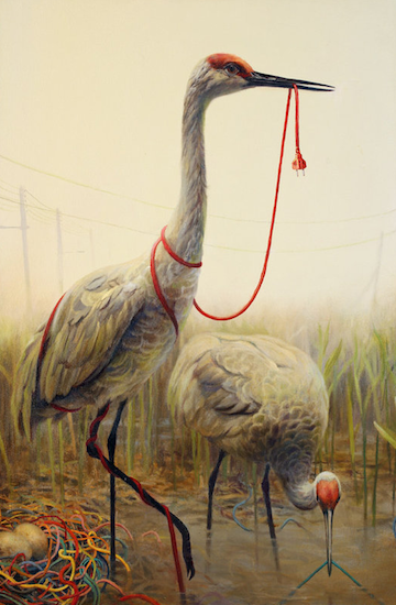 2016-10-05-1475689017-6145289-HP_Wittfooth_Snare.png