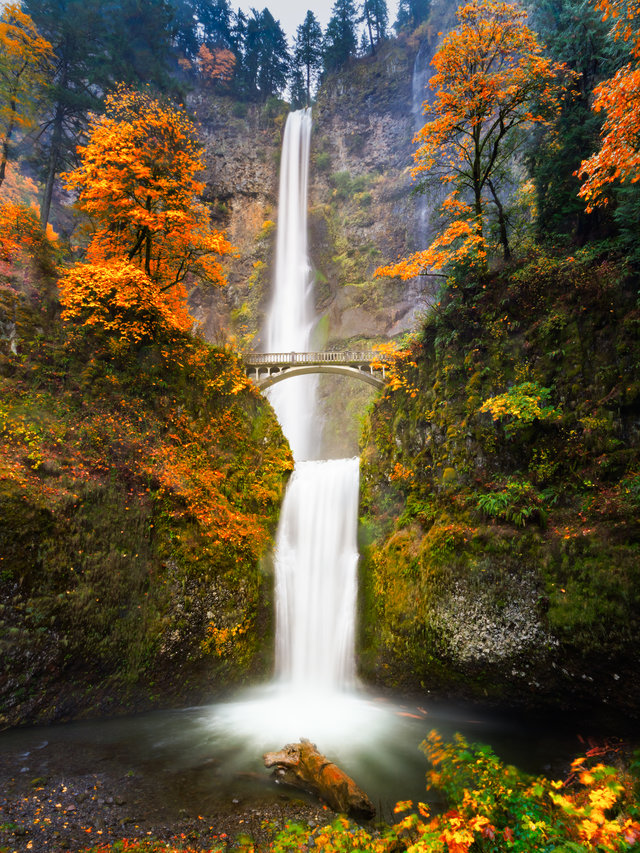 America's Best Places To See Fall Colors (That Aren't In