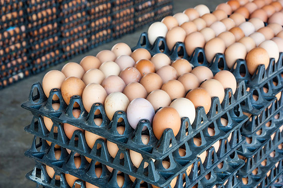2016-10-11-1476199777-8664398-eggprices.jpg