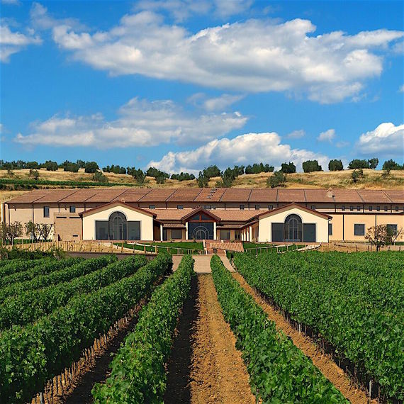 FALESCO FAMILY OF LAZIO AND UMBRIA  AIMS TO BE A GLOBAL PLAYER  IN WINE