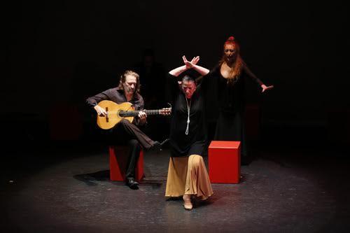 2016-10-26-1477451305-9322408-flamenco.jpg