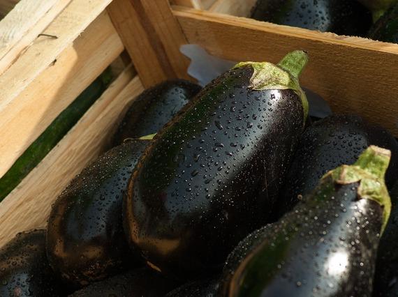 2016-10-26-1477490994-4412597-eggplant1707629_1920.jpg
