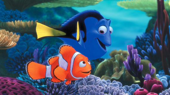 how to keep your own nemo and dory huffpost uk