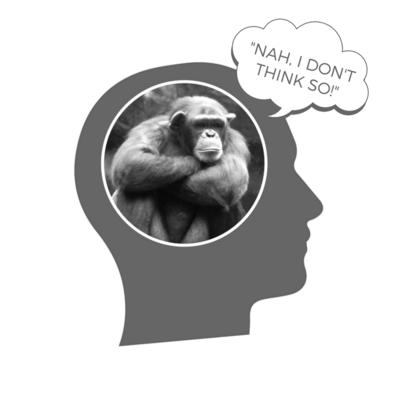 2016-11-11-1478861957-9702816-Chimp_brain.png
