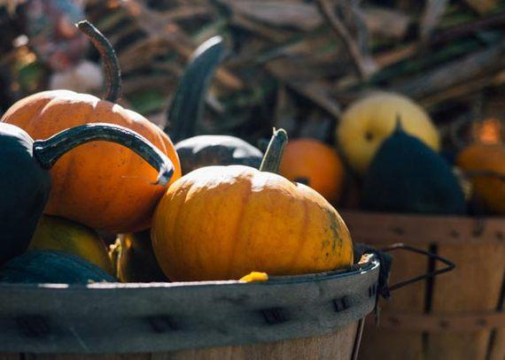2016-11-21-1479738451-889022-pumpkins.jpg