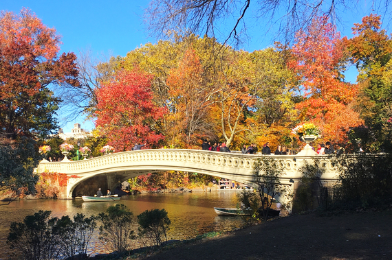 2016-11-25-1480106775-5542555-Central_Park_New_York_Bow_Bridge_2.jpg