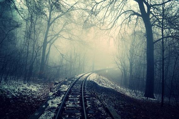 2016-11-28-1480367353-5693733-darkcurveforestrails.jpg