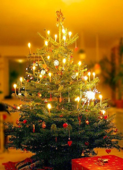Getting The LED Out: Christmas Tree Candles And Candle Holders Are ...