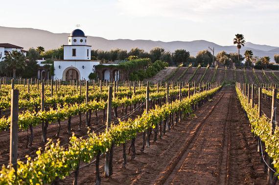 2017-01-06-1483660835-6339874-MexicoAdobe_guadalupe_winery_2.jpg