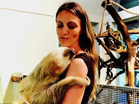 2017-01-09-1483979801-4830473-sloth.jpg