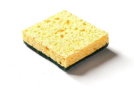2017-01-12-1484223016-6121293-sponge.jpg