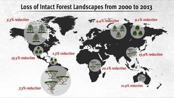 2017-01-18-1484717057-7642855-lossofintactforestlandscapes20002013CreditCarlaSchafferatAAASccr364.jpg