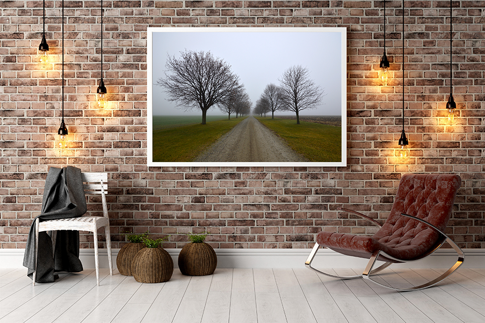 Photography And Framing Options For Your Home D Cor