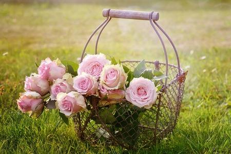 2017-02-03-1486150762-4333146-roses1566792_640.jpg