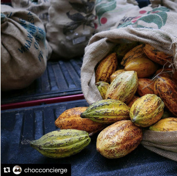 2017-02-14-1487084737-9501421-CacaoPodsRegramChocolateConcierge.jpg