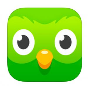 2017-02-22-1487792421-6577315-Duolingo300x296.png