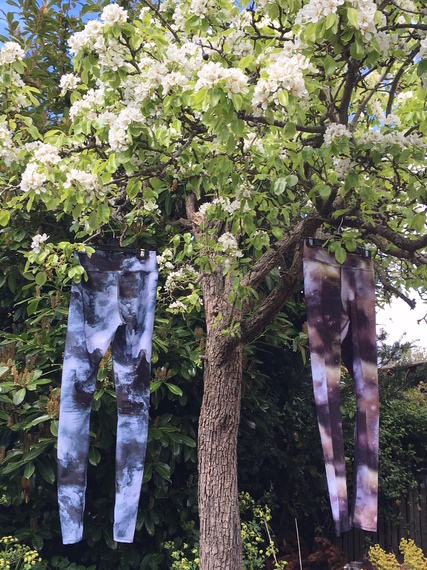 2017-04-17-1492428377-4210579-treepantscopy.jpg