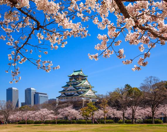 2017-04-18-1492531215-8509829-CherryBlossomOsaka_booking.com.jpg