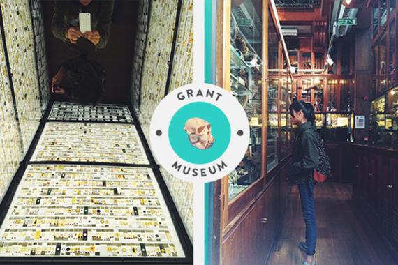 2017-05-06-1494081756-3808591-GrantMuseum.jpg