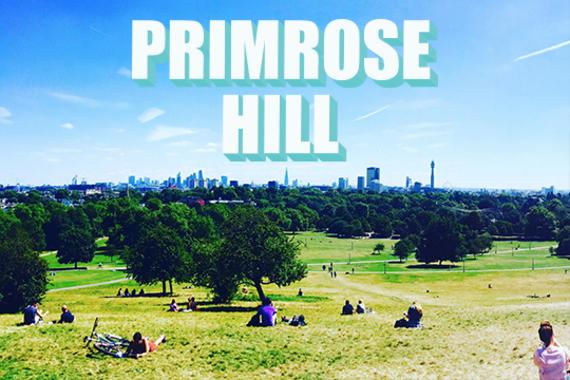 2017-05-06-1494082165-2299628-primrosehill.jpg