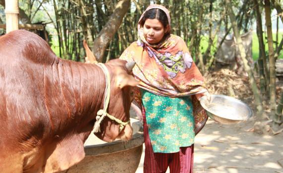 2017-06-05-1496656706-3293994-Bangladesh10.jpg