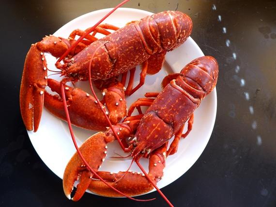 2017-07-10-1499701764-6236731-lobsters4Copy.jpg