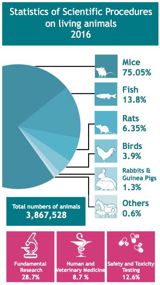 importance of vital statistics pdf