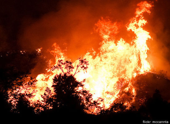From Flickr user mccannta: Flames from La Cresenta in the Station Fire in Southern California.