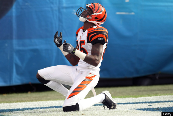 Image result for chad johnson chris henry
