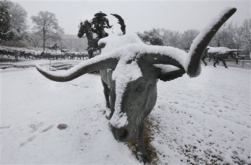 Dallas Snowfall today 2010-2