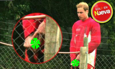 Prince William Penis Picture 33