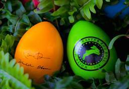White House Easter Egg Roll Twelve Things You Didnt Know And A