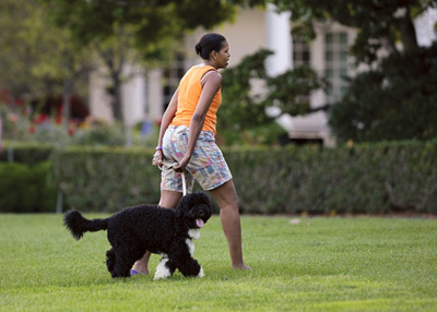 Michelle Obama Walking Her Dog On The White House Lawn