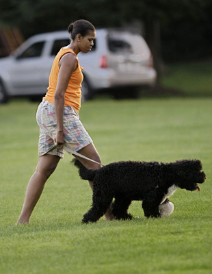 michelle walking the dog